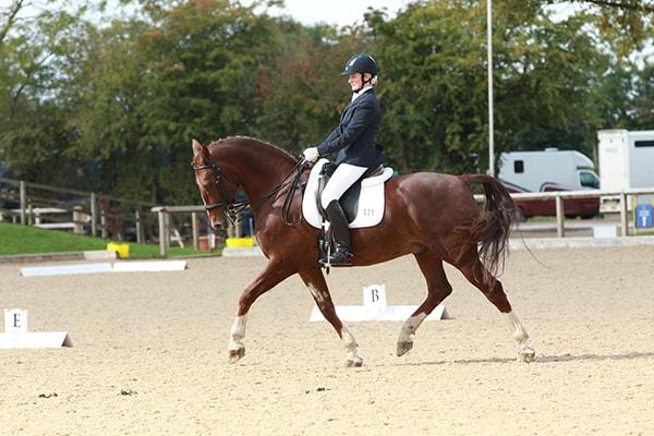 Horseback Riding in Swindon